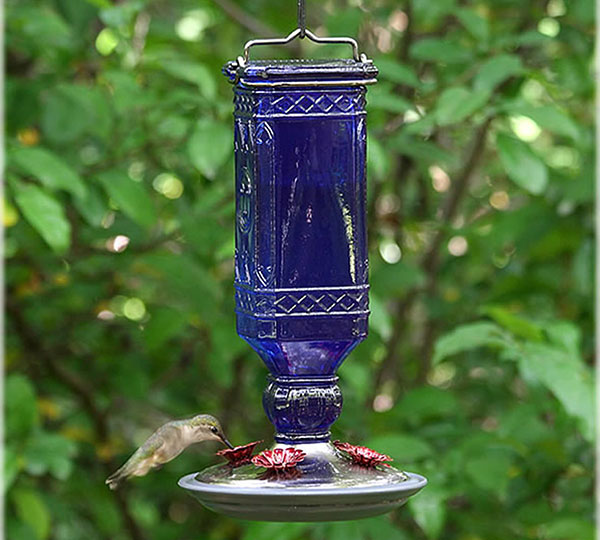 Blue Bottle Hummingbird Feeder