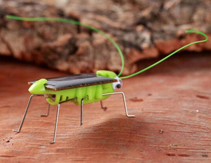 Solar Powered Grasshopper