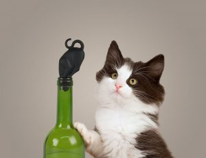 Stop Kitty Wine Bottle Stopper