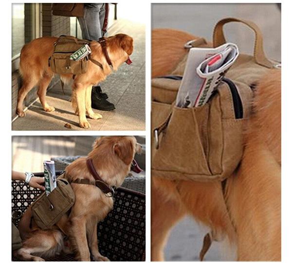 Travel Dog Backpack