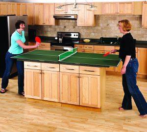 Portable Table Tennis Top