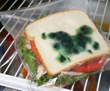 Anti Theft Moldy Sandwich Bags