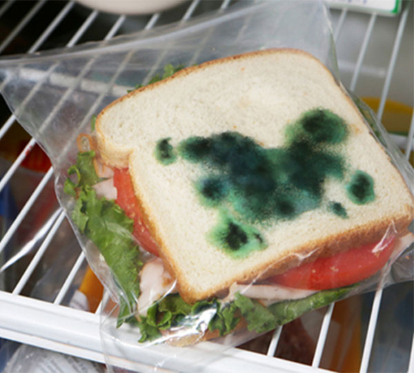 Anti Theft Moldy Sandwich Bags