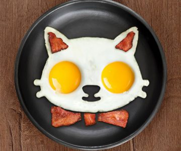 Cat Shaped Egg Mold