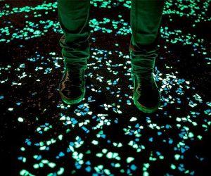 Glow In The Dark Pebbles