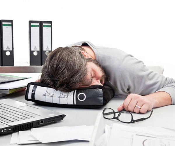Binder Shaped Power Nap Office Pillow