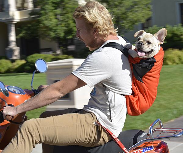 K9 Sport Sack - The Original Dog Carrier Backpack