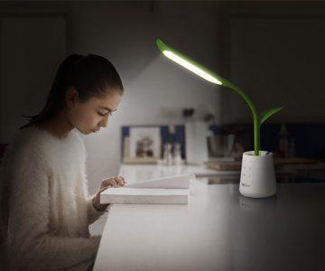 Leaf Pot Desk Lamp