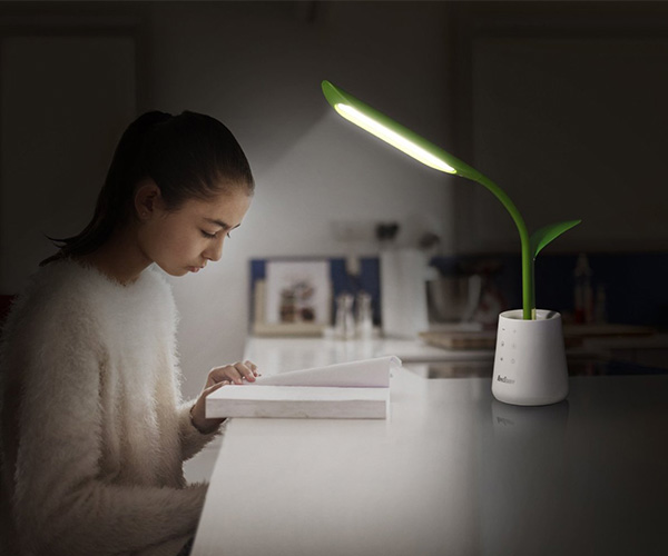 Leaf Pot Desk Lamp