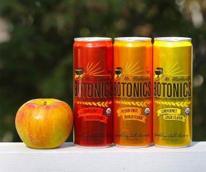 Mr. Blackwell's Botonics Organic Apple Cider Vinegar Drink