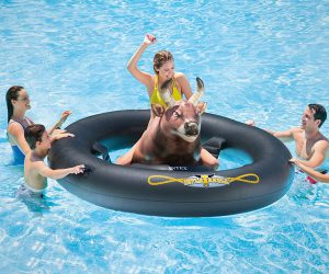 Inflatable Pool Tube with a Bull