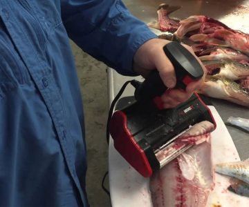 Electric Fish Skinner Remove Bones & Skins