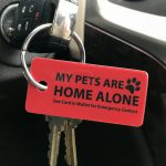 Cool Things To Buy - Emergency Pet Key Tags