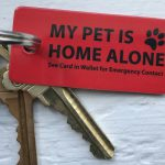 Emergency Pet Key Tags