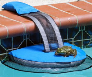FrogLog Critter Saving Escape Ramp