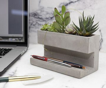 Concrete Desk Top Planter and Pen Holder