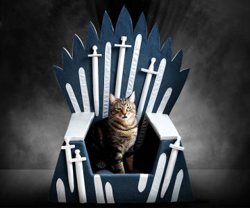 Iron Throne Cat Bed