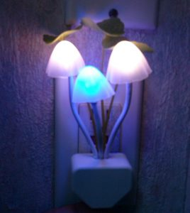Multi-Coloured Mushroom Night Light